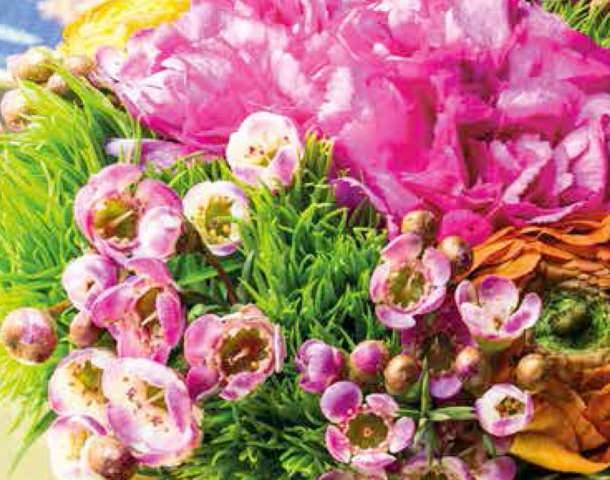 Grazie a  Gardenia per aver scelto ArjumandsWorld Store per questa storia di primavera